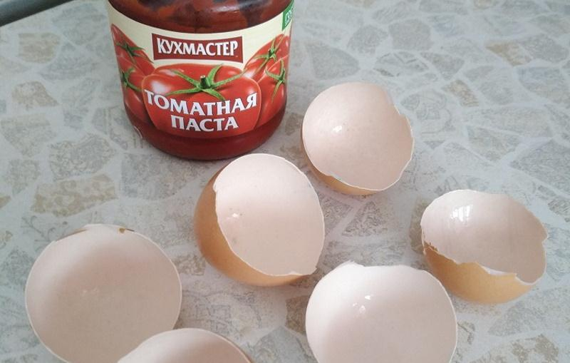 Как сохранить томатную пасту от плесени